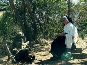 Nun and Baboon for web